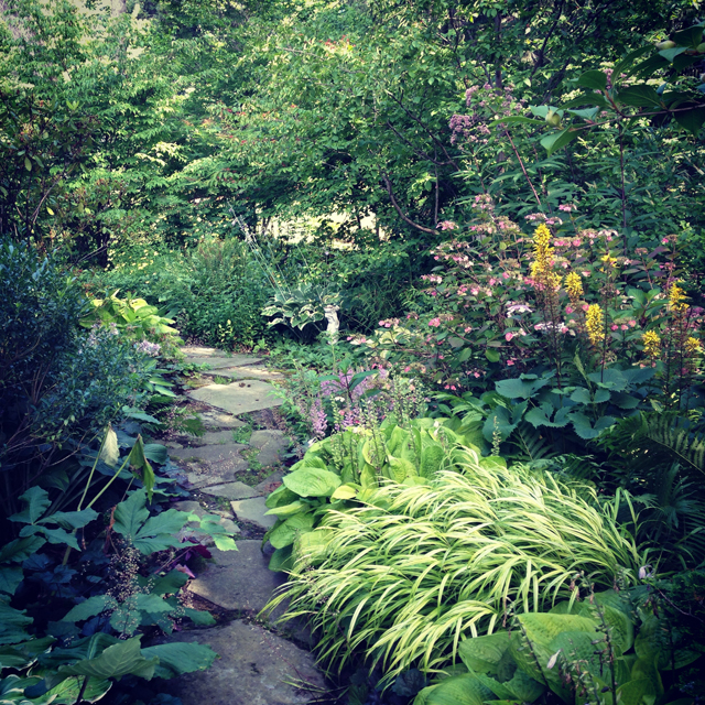 Stunning Perennial Garden Maintenance