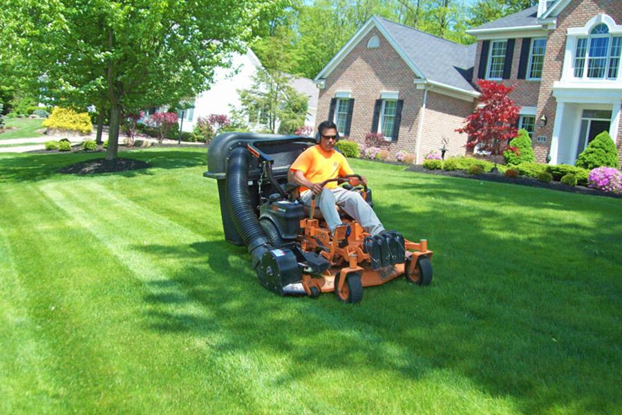 hemlock lawn mowing