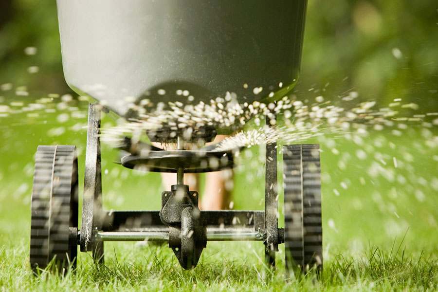 hemlock lawn maintenance