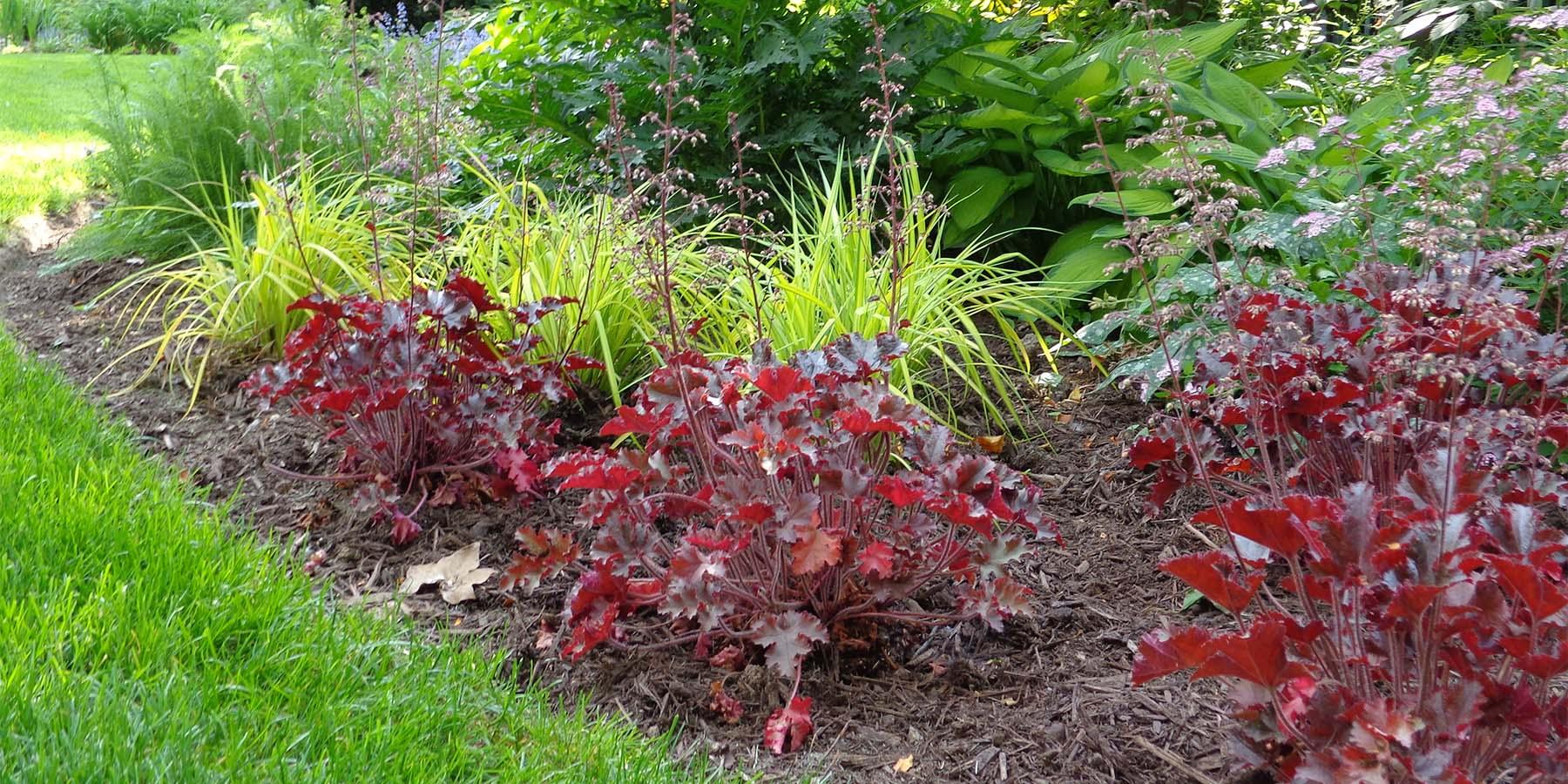 hemlock garden design